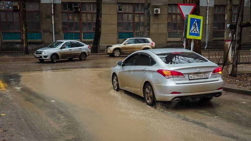 Одинокая цапля посреди реки: что принесло январское потепление в Симферополь (фотогалерея)