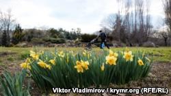 В детском парке Симферополя начали высаживать цветы – администрация