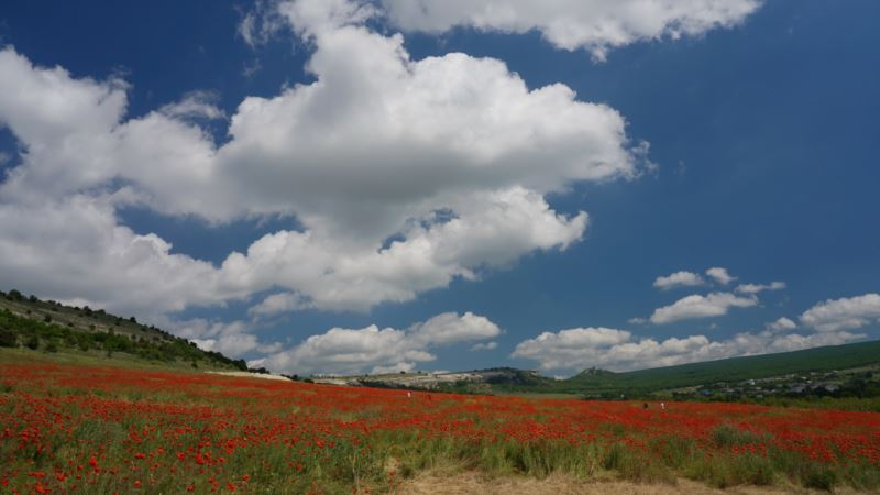В Крыму 23 мая будет тепло и солнечно – синоптики