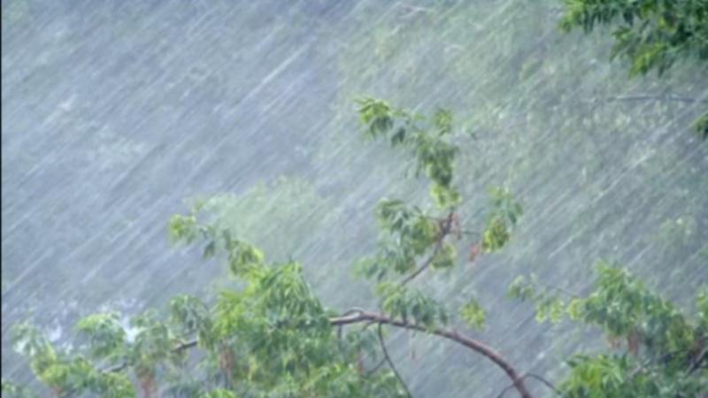 «Дети сидят на окнах, куры в сарае утонули»: в Керчи затопило дома, грязевые потоки залили дороги