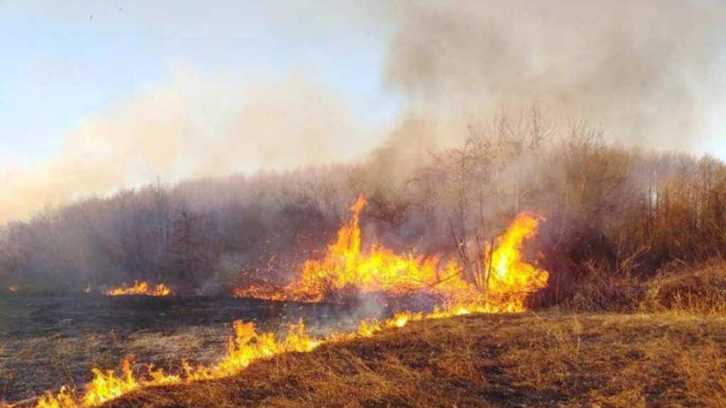 В Сакском районе из-за обрыва ЛЭП сгорело 800 кв. метров сухой растительности – спасатели