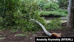 Дожди с грозами, сильный ветер: непогода не покидает Крым