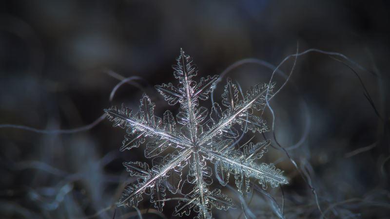 Синоптики обещают ночные заморозки в Украине на следующей неделе