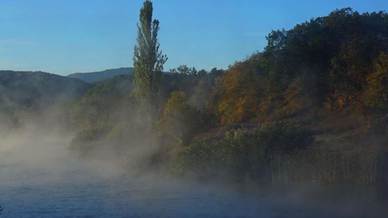 Первый иней на зеленых кустах: морозное утро в крымской Грушевке (фотогалерея)