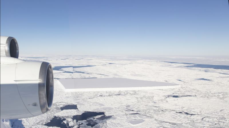 В Антарктиде откололся самый большой за полвека айсберг