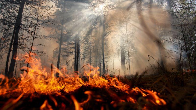 В Крыму за месяц произошло более 700 пожаров – спасатели
