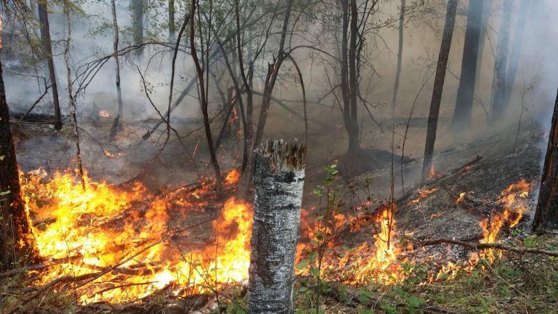 Штормовое предупреждение: высокая пожароопасность в Крыму сохранится до 15 ноября