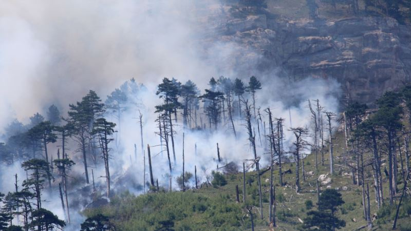 Лесной пожар под Симферополем: спасатели развернули оперативный штаб