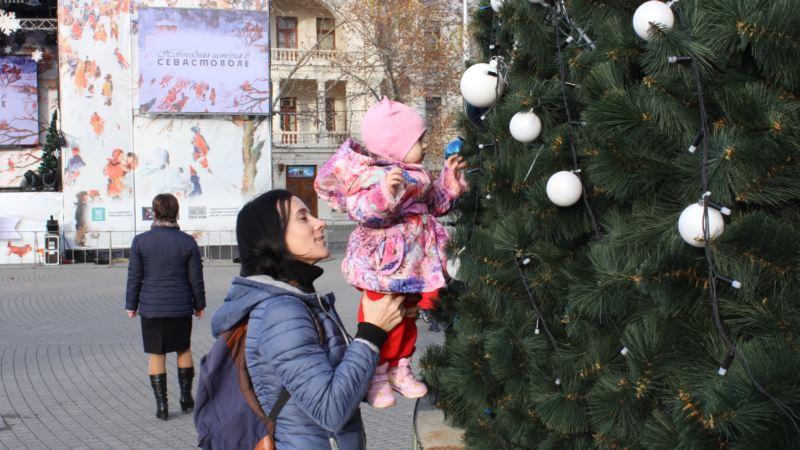 В центре Севастополя начали монтировать 20-метровую новогоднюю елку – власти