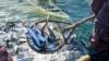 В ФСБ утверждают, что капитан задержанного в Азовском море судна признал свою вину на допросе