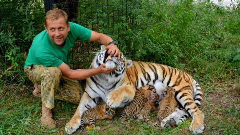 Зубков получил российский договор на аренду участка для ялтинского зоопарка «Сказка»