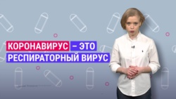 Коронавирус: Развожаев не видит оснований для объявления карантина в Севастополе