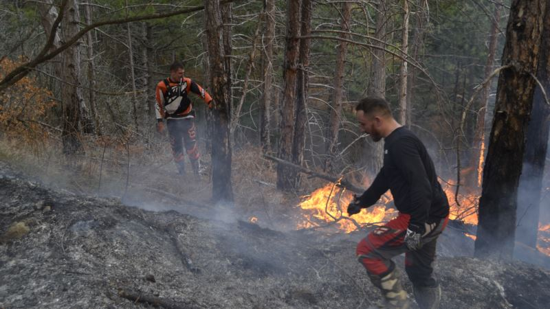 Очевидец о лесном пожаре под Ялтой: Сначала услышал хлопок, затем увидел пламя (+фото)