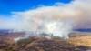 Пожары в Чернобыльской зоне и на Житомирщине: МВД не исключает, что это диверсия