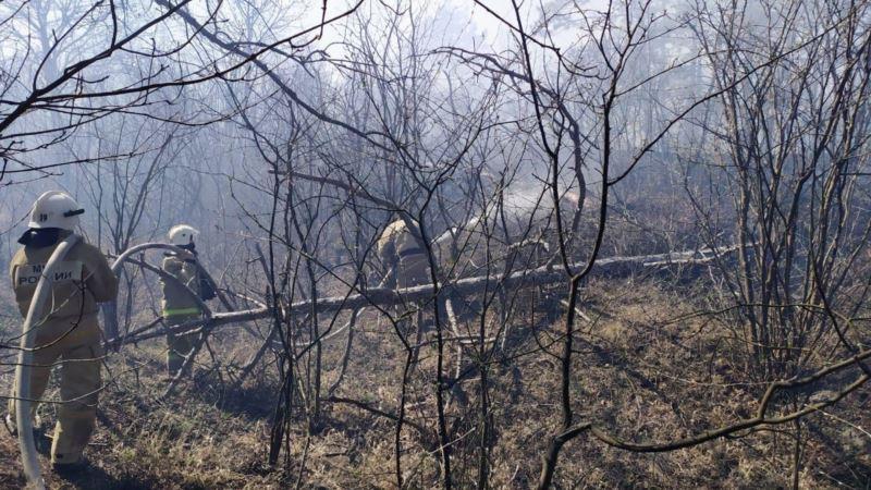 Спасатели более 12 часов тушили лесной пожар в Симферопольском районе