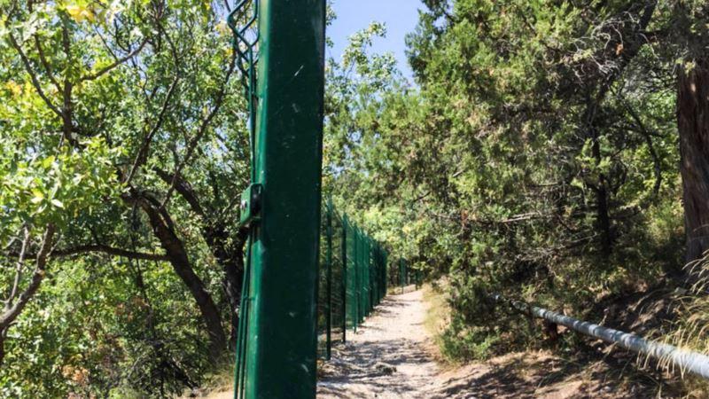 Житель Евпатории получил два года колонии за кражу можжевельника из севастопольского сквера