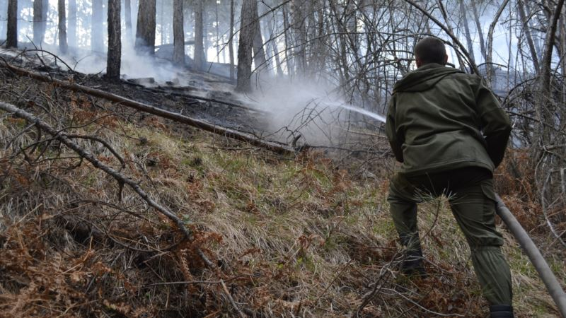 В Симферопольском районе тушат лесной пожар