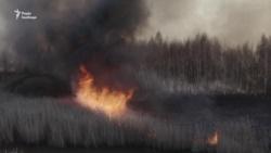 Спасатели продолжают тушить лесные пожары в Чернобыльской зоне