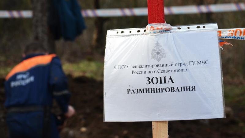 Севастополь: на дачном участке обнаружили «коктейли Молотова»