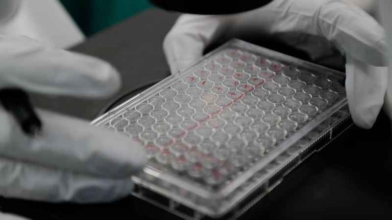 Евросоюз собрал 9,5 млрд евро на вакцину от COVID-19