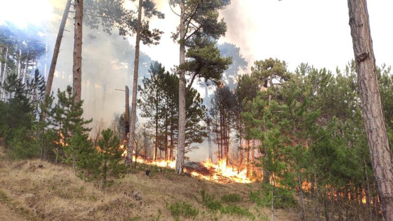 В Крыму за неделю произошло 63 пожара и 10 аварий на дорогах – МЧС