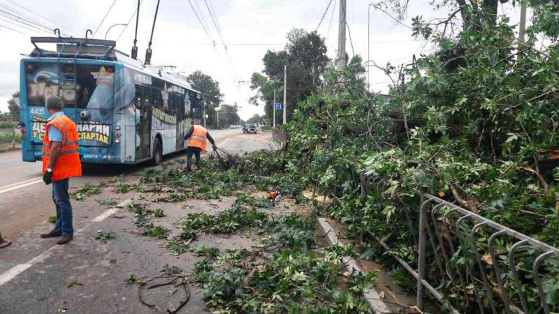 Ночная гроза и ураганный ветер: крымские дороги завалены деревьями (+фото)