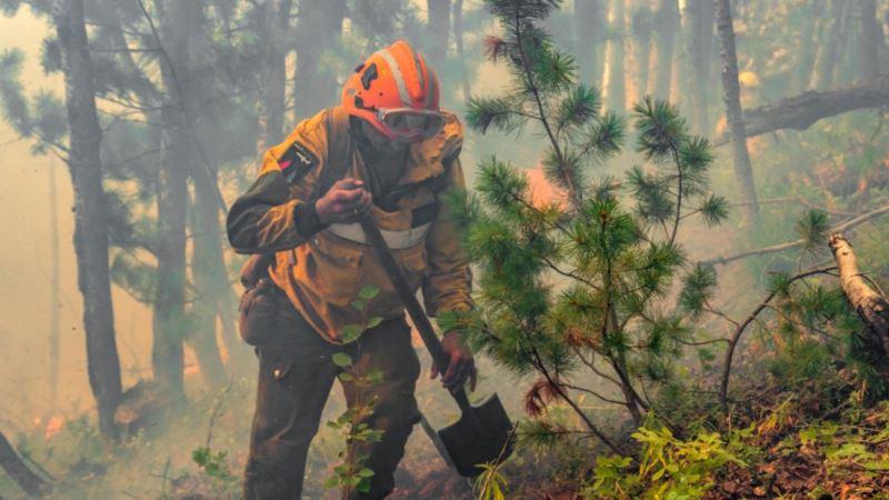 Россия: в Якутии огонь уничтожил больше 300 тысяч гектаров леса