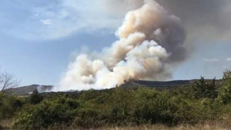 Крымские спасатели назвали регионы полуострова, где чаще всего вспыхивали пожары