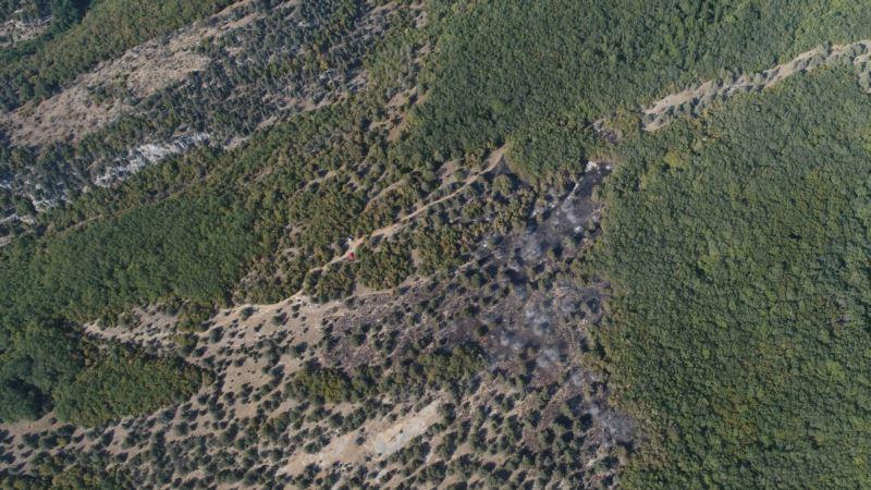Спасатели сутки тушили лесной пожар под Севастополем