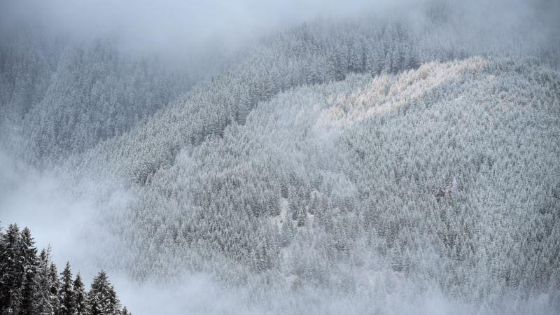 В Карпатах выпал снег – синоптики
