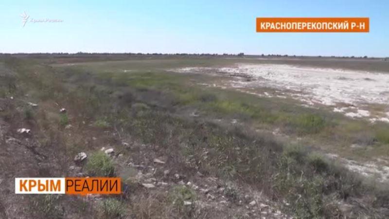 Предприятия Крыма потребуют у Украины запустить канал?   Крым.Реалии ТВ (видео)