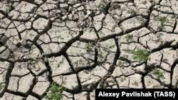 Источник, питающий село в Белогорском районе, полностью пересох – власти
