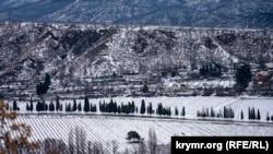 Спасатели в Крыму предупреждают об усилении ветра и гололедице