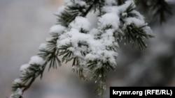 Мокрый снег, дождь и гололедица: в Крыму объявили штормовое предупреждение– спасатели