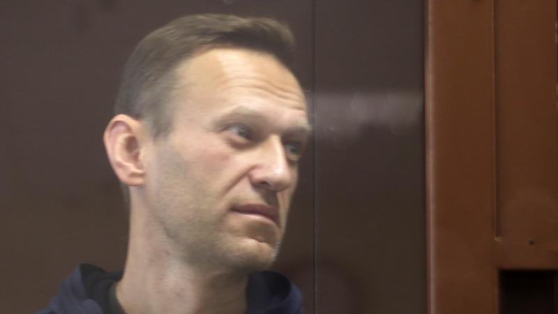 Россия: жена Алексея Навального утверждает, что его отправили в колонию без паспорта